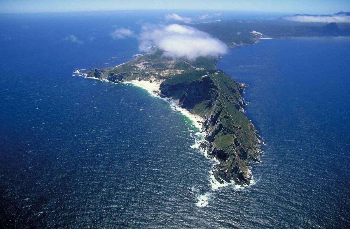 Cape Peninsula Tour Half Day