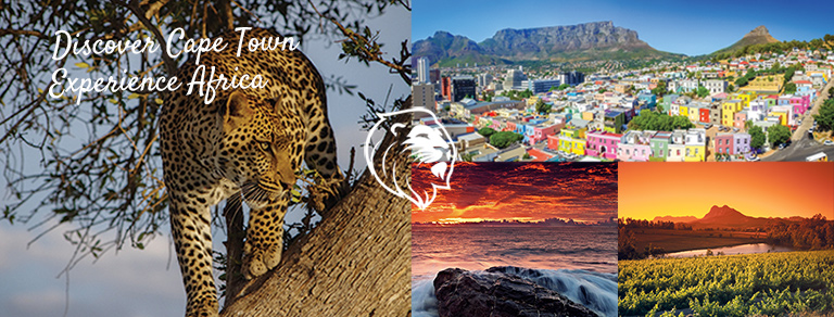 Cape Town Safaris and Daytours