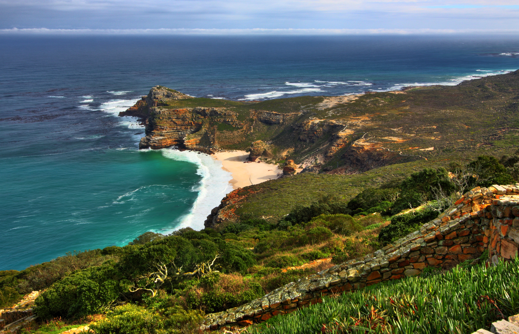 Cape Peninsula Tour Half Day