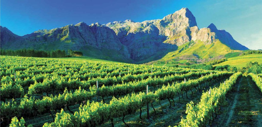 Cape Town Winelands Tour – Full Day