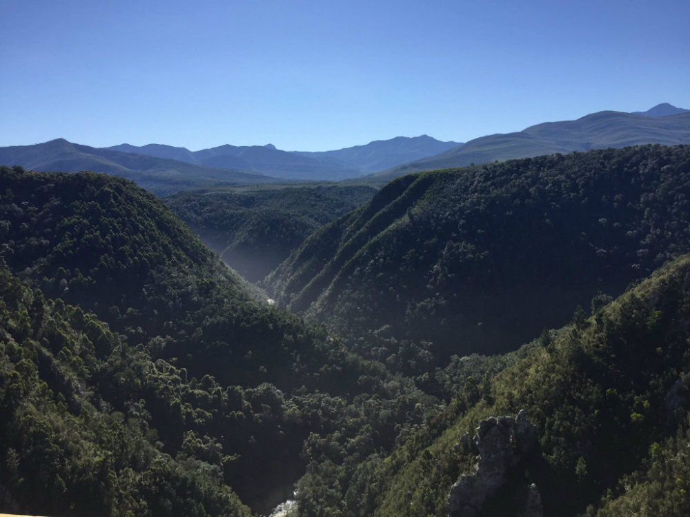 bungee-jump-tsitsikamma-national-park-bloukrans-river-bridge-1-1000