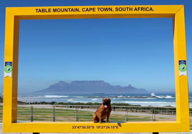 blouberg-frame-table-mountain