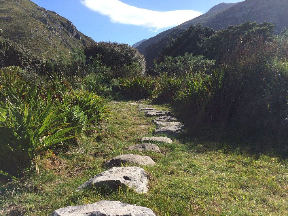harold-porter-national-botanical-garden-whale-route-8