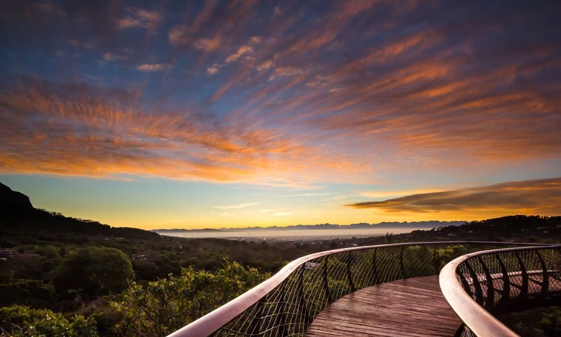 kirstenbosch-cape-town-canopee-bridge-sunset