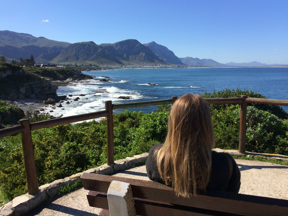 whale-route-from-cape-town-to-hermanus-4