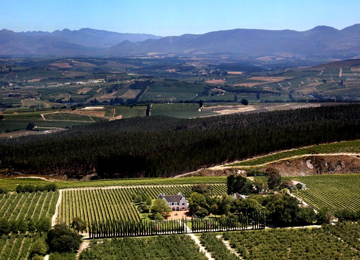 whale-route-from-cape-town-to-hermanus-elgin-valley