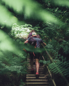 hiking-in-wilderness