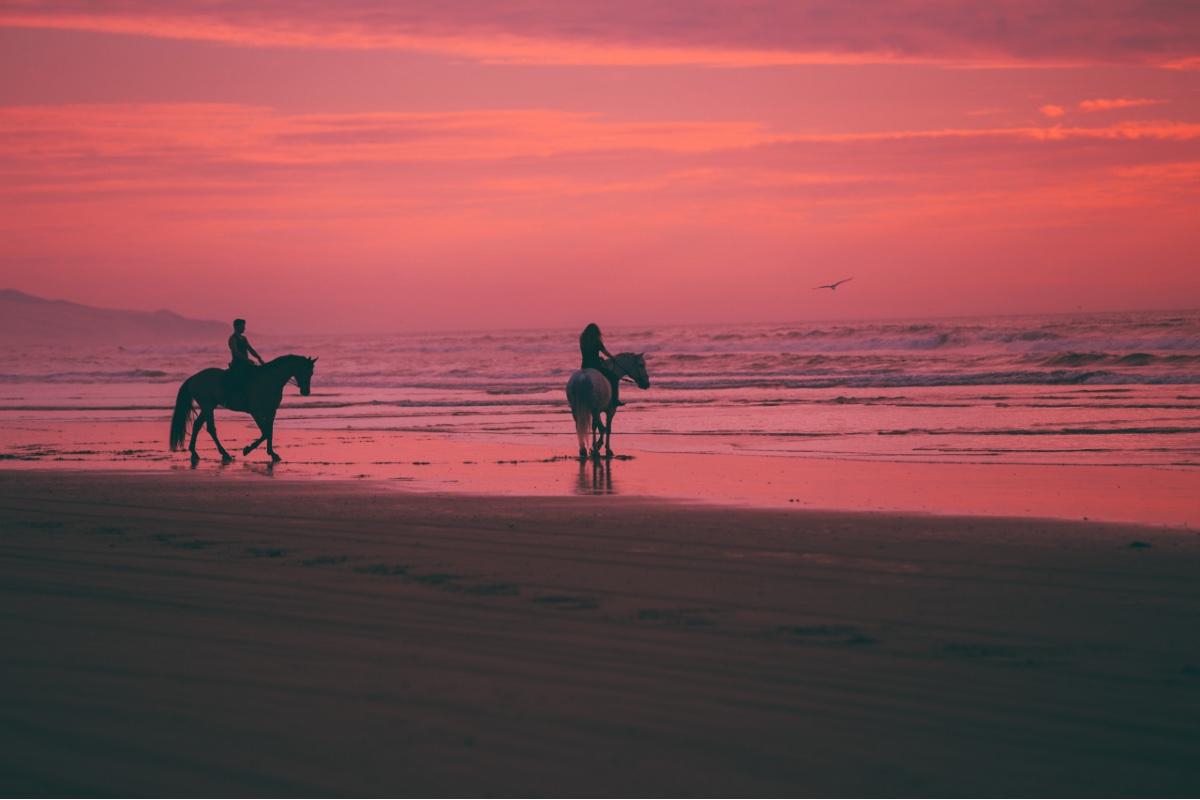 Cape Peninsula - Horse Riding